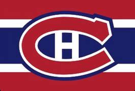 Essay on national sport hockey